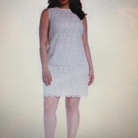Calvin Klein Plus Size Lace Sheath Cream NWT